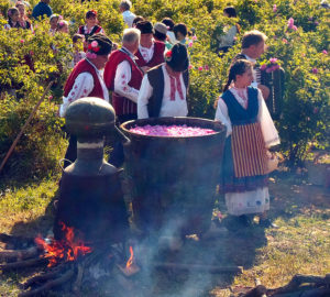 Distillation of rose oil - event from the rose festival in Kazanlak