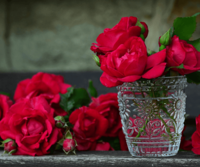 Glass vase with red roses - meaning of a red rose